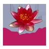 Logo Institut Galactée, institut d'esthétique