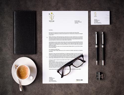 Création identité visuelle – Treelime Hôtel